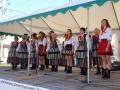 Festyn Kultury i Tradycji Lokalnej w Twardej